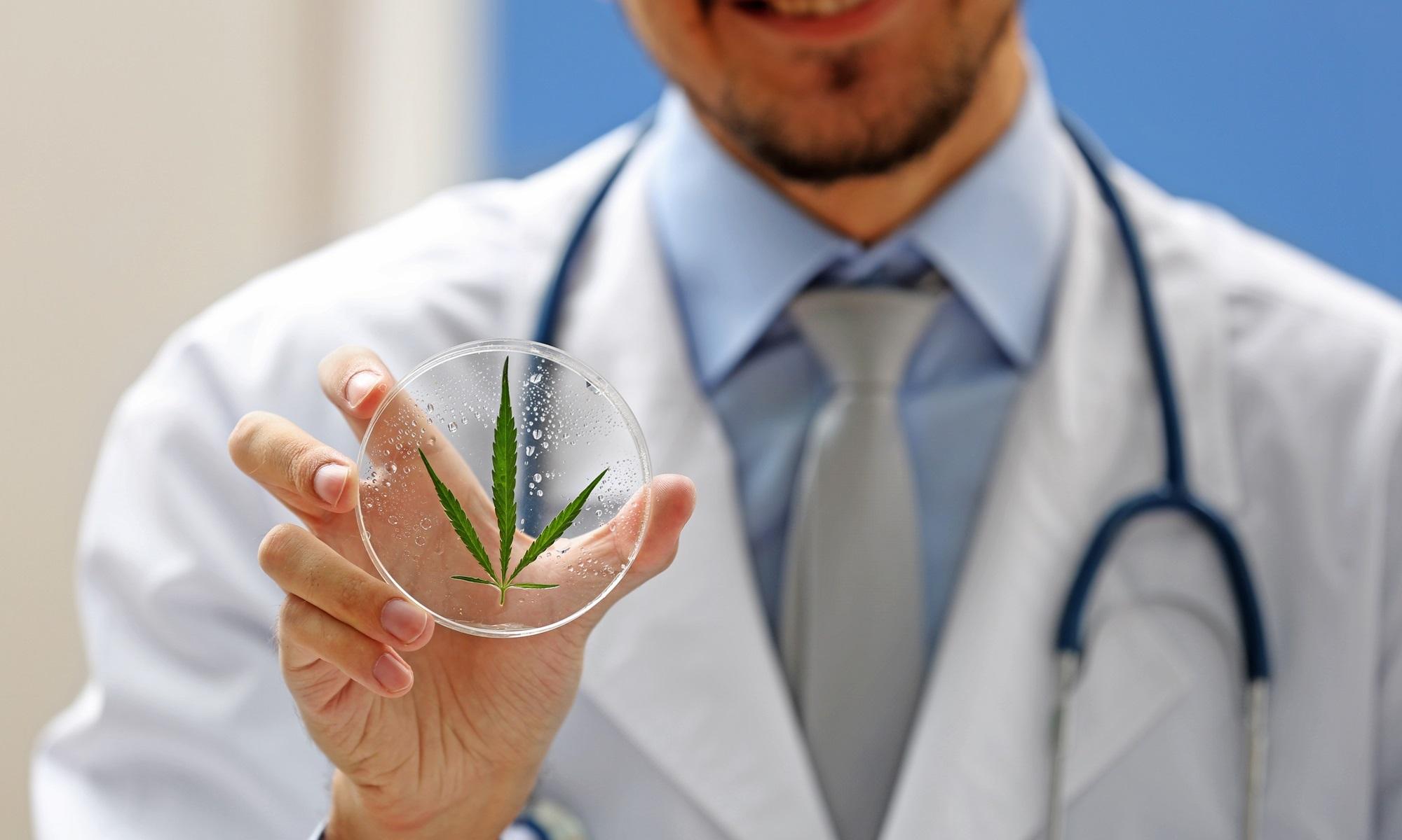 Paises donde la marihuana medicinal es legal